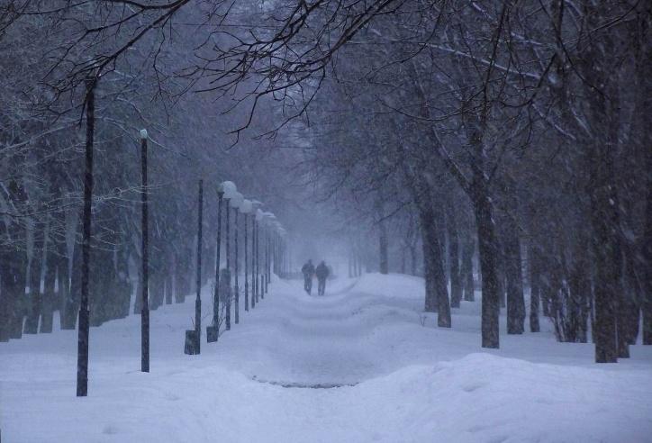 Вцентре РФ предполагается сильнейший снегопад
