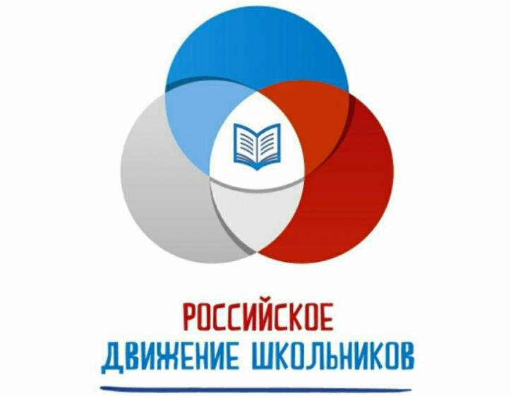 ВРязанской области «Российское движение школьников» отметило первую годовщину содня образования